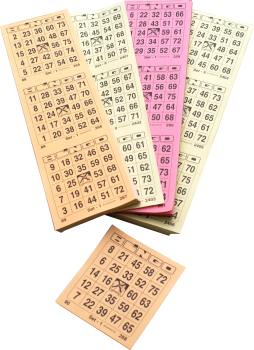 Bingo Tickets 25/75